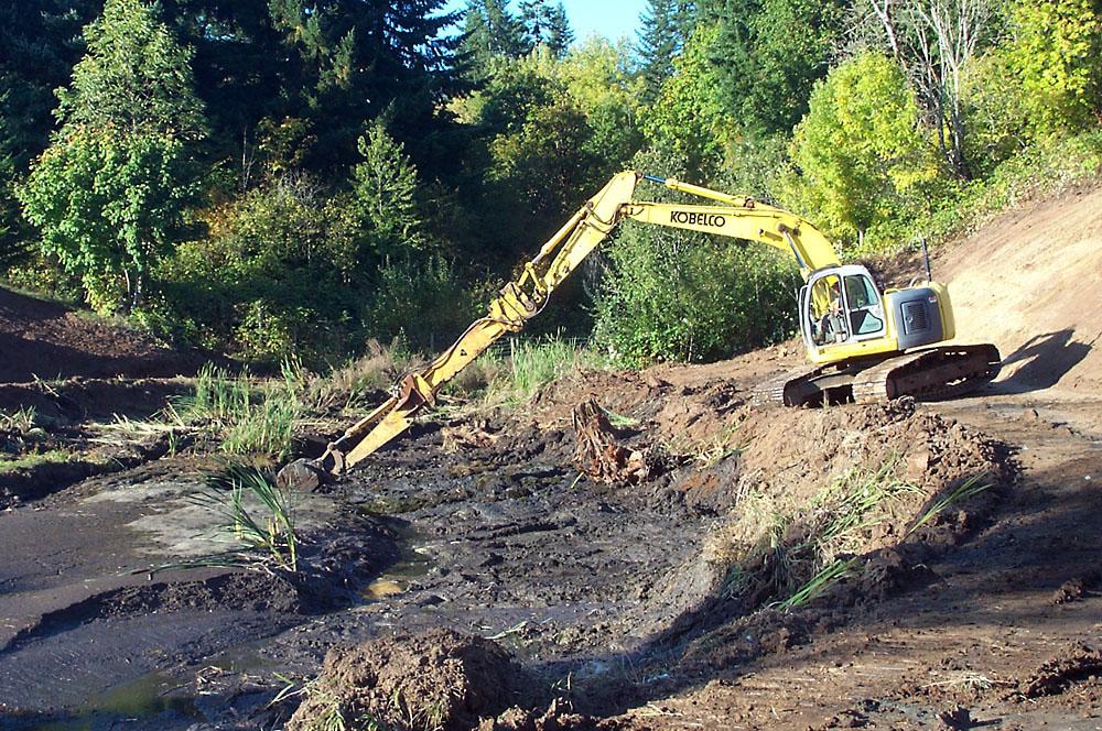 Olenik Pond Excavation